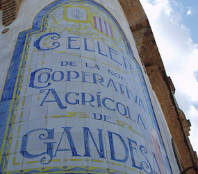 El vi: de la vinya al celler